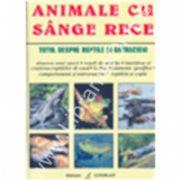 Animale Cu Sange Rece