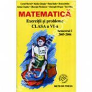 Matematica Exercitii si probleme pentru clasa a VI-a, semestrul I