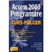 ACCES 2003. Programare - curs fulger