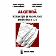 Algebră - exerciţii şi probleme pentru clasa a X-a