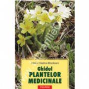 Ghidul plantelor medicinale