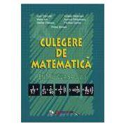 Culegere de matematica. Clasa a V-a