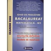 Ghid de pregatire. Bacalaureat la Matematica M1, 2008