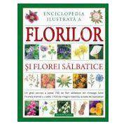 Enciclopedie ilustrata a florilor si florei salbatice. Un ghid valoros a peste 750 de flori salbatice din intreaga lume