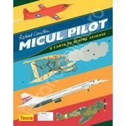 Micul pilot