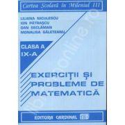 Liliana Niculescu - Exercitii si probleme de matematica. Clasa a IX-a