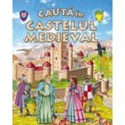 Cauta in castelul medieval