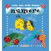 Mica mea carte despre NUMERE