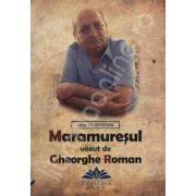 Maramuresul vazut de Gheorghe Roman