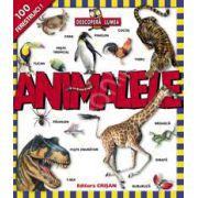 Descopera lumea - ANIMALELE