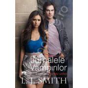Jurnalele vampirilor volumul 6: Intoarcerea: Suflete-umbra