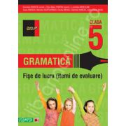 Gramatica. Fise de lucru pentru clasa a V-a. Itemi de evaluare (Colectia foarte bine)