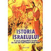 Istoria Israelului. O istorie pictografica a evreilor din cele mai vechi timpuri pana astazi