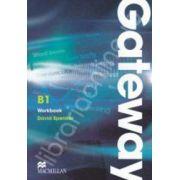Gateway B1 Workbook (Multi level course)