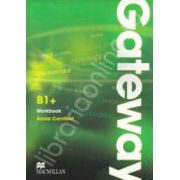 Gateway B1 plus Workbook (Multi level course)