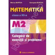 Matematica culegere de exercitii si probleme M2, clasa a XII-a