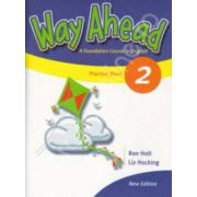 Way Ahead 2 Grammar Practice Book