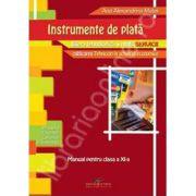 Instrumente de plata. Manual pentru clasa a XI-a