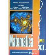 Matematica (M1) manual pentru clasa a XI-a (Ion Mihai)