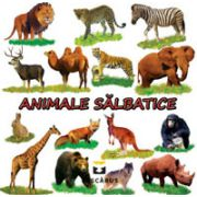 Animale salbatice (Carte cu imagini color)
