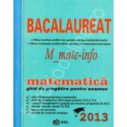 Bac 2013 matematica, M_matematica-informatica. Bacalaureat 2013 matematica- informatica (Ghid de pregatire)