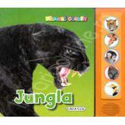 Jungla (Apasa pe butoane si vei auzi animalele din jungla!)