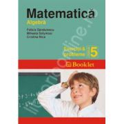 Matematica (Algebra). Exercitii si probleme pentru clasa a 5-a