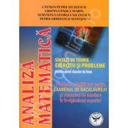Analiza matematica, probleme pregatitoare pentru examenul de bacalaureat (Sinteze de teorie. Exercitii si probleme)