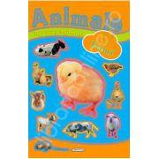 Jocuri si abtibilduri cu animale - Ferma
