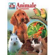 Animale de companie - Ce si cum
