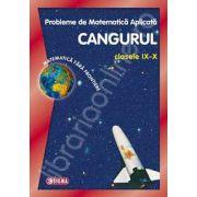Cangurul 2014. Probleme de matematica aplicata CANGURUL, pentru clasele IX-X