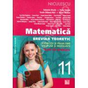 Matematica pentru clasa a XI-a. Breviar teoretic cu exercitii si probleme propuse si rezolvate (Editia a II-a)