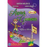 Auxiliar de Algebra si Geometrie pentru clasa a VIII-a