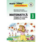 Mate 2000. Matematica CONSOLIDARE, culegere de exercitii probleme si teste, pentru clasa a III-a