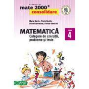 Mate 2000. Matematica CONSOLIDARE, culegere de exercitii probleme si teste, pentru clasa a IV-a
