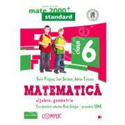 Mate 2000 pentru clasa a VI-a. STANDARD. Matematica - Algebra, geometrie (Editia a II-a, revizuita)