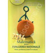 Matematica pentru evaluarea nationala 2014. Teme, probleme si teste de evaluare (Clubul matematicienilor)