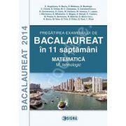 Bacalaureat 2014 in 11 de saptamani (Matematica - M_tehnologic)