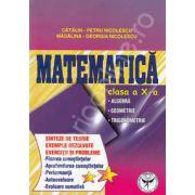 Matematica clasa a X-a. Algebra, geometrie, trigonometrie (Sinteze de teorie exercitii si probleme)