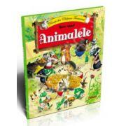 Animalele - Povesti din Padurea Fermecata