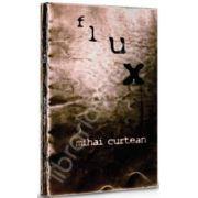 flux (Mihai Curtean)