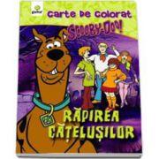 Scooby-Doo. Rapirea catelusilor (carte de colorat)