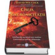 Cheia Sincronicitatii - Inteligenta ascunsa care sustine Universul si care te calauzeste