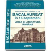 Bacalaureat 2014 la Limba si Literatura Romana, in 15 de saptamani