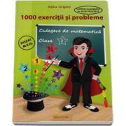 Culegere de matematica 1000 exercitii si probleme pentru clasa I