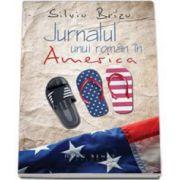 Brizu Silviu, Jurnalul unui roman in America