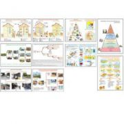Planse educationale tehnologice clasele V-VIII - Set 12 planse color