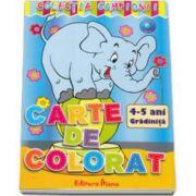 Carte de colorat 4-5 ani Gradinita (Colectia Campionii)