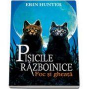 Erin Hunter, Pisicile razboinice. Foc si gheata - Volumul II