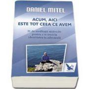 Daniel Mitel - Acum, aici este tot ceea ce avem. 21 De meditatii stravechi pentru a te trezi la identitatea ta adevarata